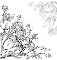 elegance floral background with graphic spring vector image