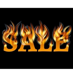 Sale Design with Fire vector image