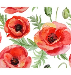 Seamless background with red watercolor poppies on vector image