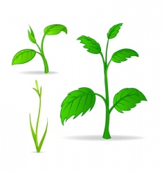 set of green cartoon plants vector image vector image