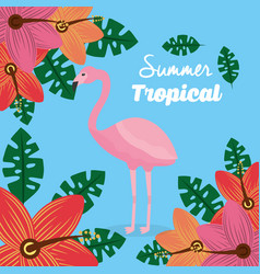 summer tropical flamingo flowers leaves poster vector image