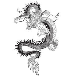 Chinese dragon black white vector
