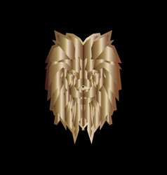 gold head lion vector image