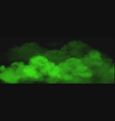 green toxic smoke fog realistic vector image