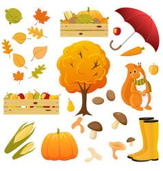 big set of cartoon fall autumn objects elements vector image