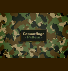 army and military camouflage texture pattern vector image