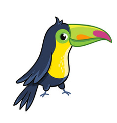 Cute toucan on white background vector