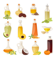 Different food oil in bottles isolated on white vector