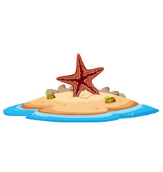 Isolated starfish on island vector