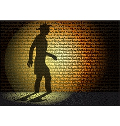 night shadow vector image