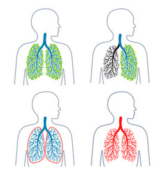 set of of respiratory system theme vector image