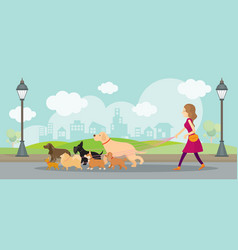 Woman with group of dogs in the park vector