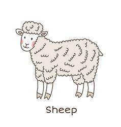 Lineart sheep vector image