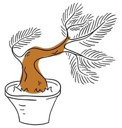Bonsai vector image