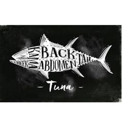 tuna cutting scheme chalk vector image vector image