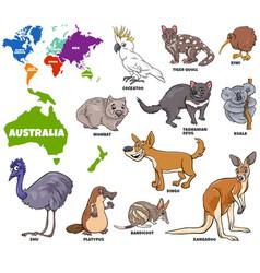 Educational australian animals set vector