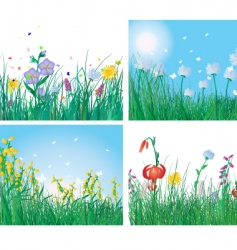grass backgrounds vector image