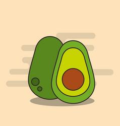 half avocado harvest nutrition diet vector image