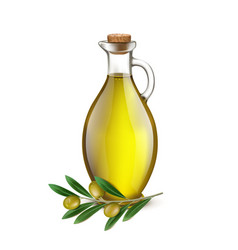 Realistic Jug Pitcher of olive oil and branch vector