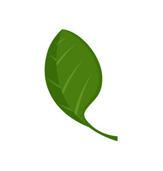Spinach leaf icon flat style vector