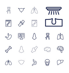 Anatomy icons vector