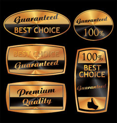 best choice golden set vector image
