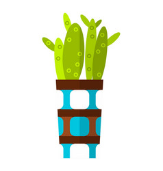 Cactus succulent flat color icon vector
