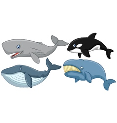Cartoon whale collection vector