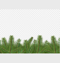 Christmas decorations border with evergreen pine vector