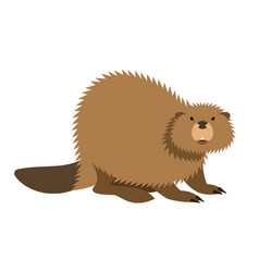 Cute beaver kids cartoon vector