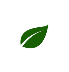 green leaf ecology nature element vector image