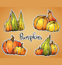 Hand drawn pumpkins stickers set vector