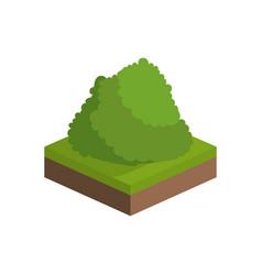 Isometric bush design vector