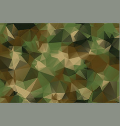 low poly style camouflage pattern texture vector image