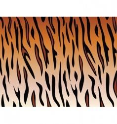 tiger skin vector image