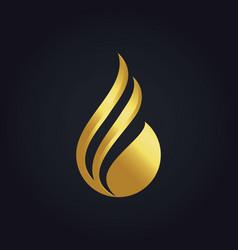 water drop abstract gold logo vector image vector image