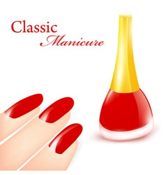 classic manicure vector image vector image