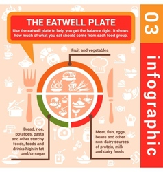 infographic concept eatwell plate vector image vector image