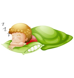A little boy sleeping soundly vector image