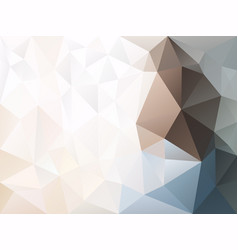 Abstract irregular polygon background vector