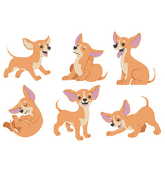 Chihuahua dog cartoon set vector