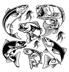 fish set logo fishing tournament club vector image