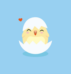 flat little chicken vector image