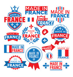 the label made in france vector image