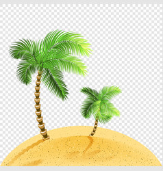 Two palms on sandy coast transparent vector
