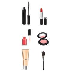 woman makeup set vector image