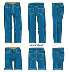 Man jeans pants and shorts vector image