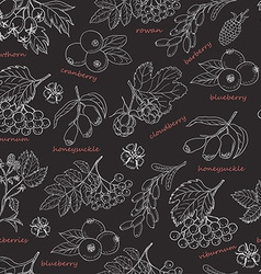 Seamless pattern with forest berries on dark vector