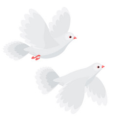 two doves flying isolated vector image