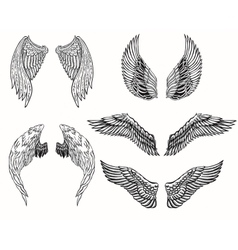 wings tattoo set vector image